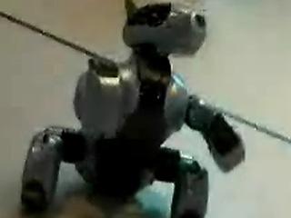 신기한 로봇의 세계