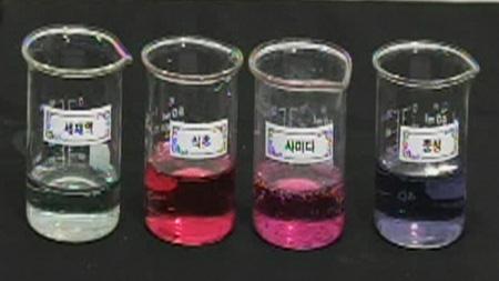 [숨은과학찾기] 식물세포의 구조와 색소반응