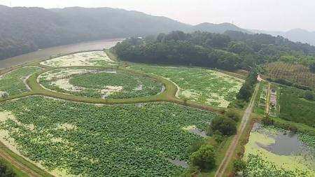 회야댐 생태습지 비밀의 숲을 가다