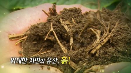 위대한 자연의 유산, 흙