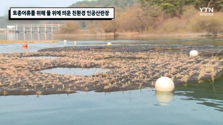 토종어류를 위해 물 위에 띄운 친환경 인공산란장