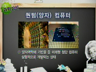 퀀텀(양자) 컴퓨터