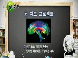 뇌 지도 프로젝트