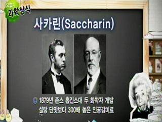 사카린(Saccharin)