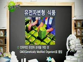 유전자변형 식품