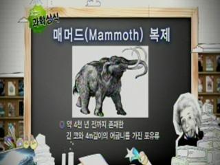 매머드(Mammoth) 복제