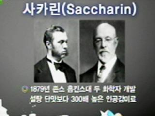 사카린 (Saccharin)