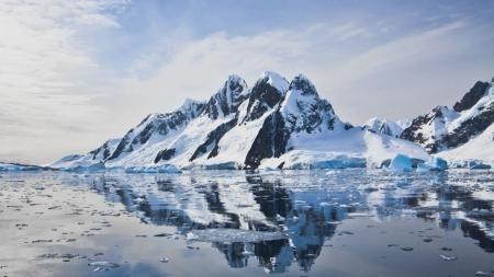 남극 해양 생물의 비밀 푼다…극지 아쿠아리움