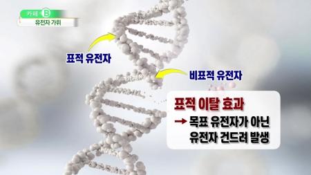유전자 가위 '오작동' 가능성은?