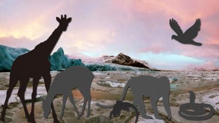 폭염·가뭄…기후변화에 적응해가는 동물들
