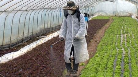 농약 안전성 걱정 끝...농약사용 관리 강화