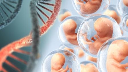 [과학본색] 유전자 교정 아기 지능 향상?… 뉴 스페이스 vs 올드 스페이스