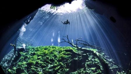 [줌 인 피플] 카메라에 담긴 바닷속 '파라다이스'…수중사진작가 김태엽 전문의