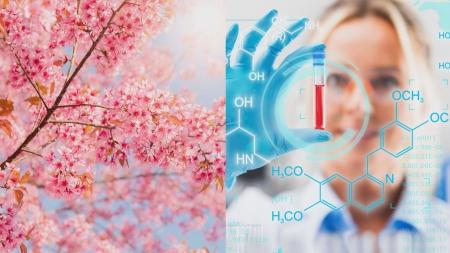 [과학본색] 봄꽃의 과학…여성과학기술인력 활용 실태조사