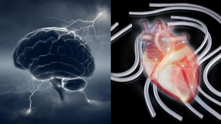 [과학본색] '난치' 파킨슨병 치료약 나올까?…소아용 인공혈관 공급 중단 사태