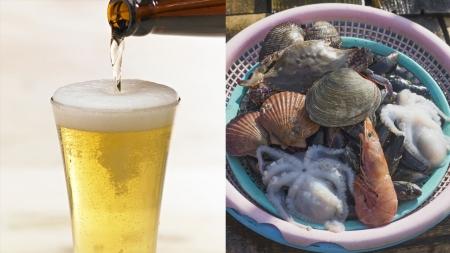 [과학본색] 맥주 속 '글리포세이트'란?…후쿠시마 수산물 수입 분쟁