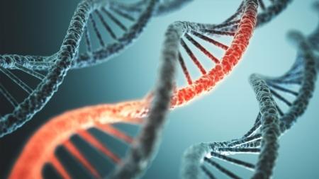 질병 유발하는 변형 RNA, 어떻게 제거될까?