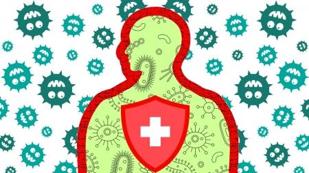 과도한 면역반응 끄는 '스위치' 발견