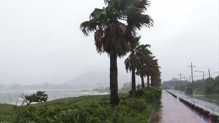 제주도 남쪽 먼바다 태풍경보...태풍, 내일 오전 전남 남해안 강타