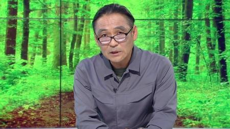 [줌 인 피플] 높은 나무에 올라 숲을 지킨다…아보리스트 김병모