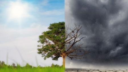 [날씨학개론] 지구온난화로 인한 기후변화, 그 절박한 위협!