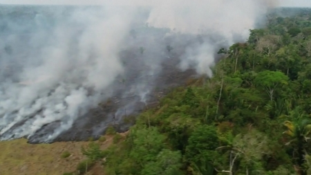 """[과학본색]""""아마존을 지켜라"""" 잇따른 구호 손길…거부하는 브라질?"""