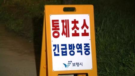 보령·포천 돼지열병 '음성'...한숨돌린 방역당국