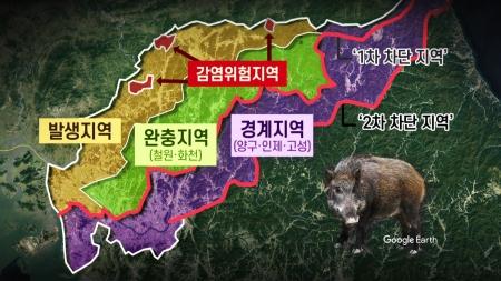 """""""야생 멧돼지 잡아라""""...접경지 '포획 작전' 돌입"""