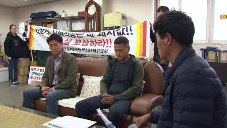 """ASF 한 달, 농장주들 막막함 호소...강화도 """"축제 재개"""""""