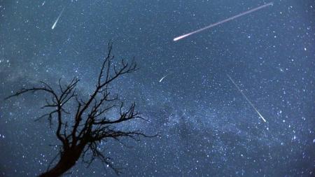 [별별이야기] 밤하늘을 수놓는 별똥별…유성우