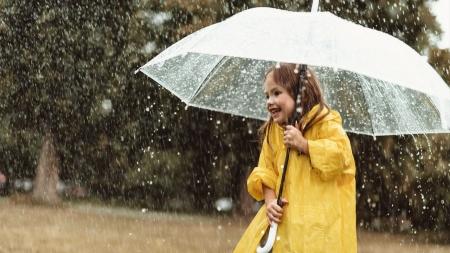 [궁금한 S] 빗속에 숨어있는 과학