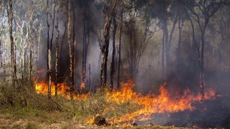 [과학본색] 최악의 호주 산불, 지구에 주는 영향은?