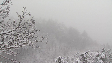 설 연휴 곳곳 비눈...동해·남해 높은 파도