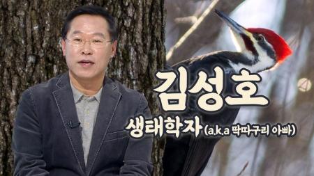 [줌 인 피플] 새를 사랑하는 '딱따구리 아빠'…생태작가 김성호