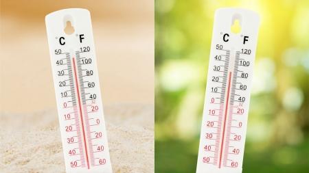 [궁금한 S] 우리는 어떻게 온도를 감지할 수 있을까?