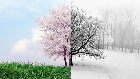 [날씨학개론] 유난히 따뜻했던 겨울, 올봄도 이른 더위 찾아오나?