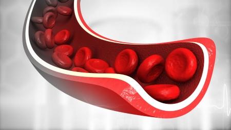 혈관 질환 치료할 혈관 줄기세포 개발