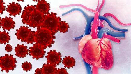 """""""코로나19, 심혈관계 기저 질환에 치명적...환자 10.5% 사망"""""""
