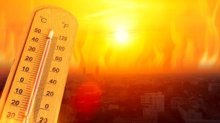 [날씨학개론] 5월부터 때 이른 더위…올여름 '역대급 폭염' 올까?