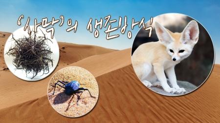 [궁금한S] 극한 환경에서도 살아남는 생물들의 이색 생존방식은?