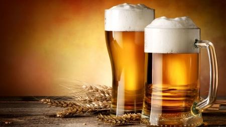[궁금한 S] 과학을 알면 맥주 맛, 2배로 즐길 수 있다