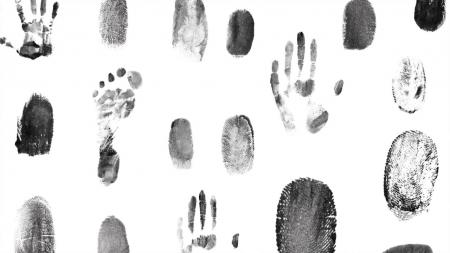 [궁금한 S] 모든 범죄는 흔적을 남긴다…범죄 수사에 도움을 주는 자연
