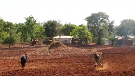 [날씨학개론] 사막화 막는 인류의 혁신적 노력…'아프리카 거대 녹색 장벽' 프로젝트