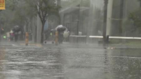 오늘 오후 태풍 장미 상륙...피해 예방 수칙은?