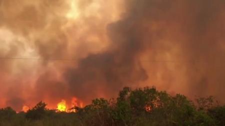 """[날씨학개론] 타들어가는 '지구의 허파' 아마존…""""회복 불가능 시점에 가까워"""""""