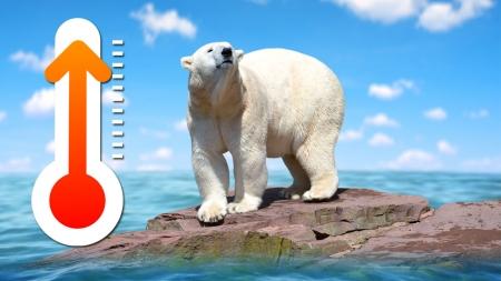 [날씨학개론] 북극 빙하와 지구온난화, 기상이변의 삼각관계는?