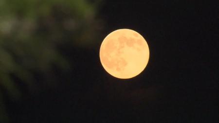 한가위 보름달 다음 달 1일 오후 6시 20분에 뜬다