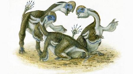 큰 부리에 발가락 두 개…앵무새 닮은 공룡 화석 발굴