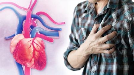 [내 몸 보고서] 초겨울 '돌연사 주범' 심혈관질환…일교차 큰 환절기에 더욱 위험