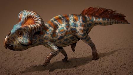 [궁금한S] 새롭게 밝혀진 공룡의 생태…공룡알은 딱딱했을까? 말랑말랑했을까?